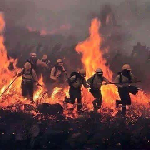 Turno de oficio: bomberos del Derecho (2/2)