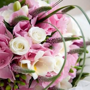 Flores_html_m6c9d0540 (1)